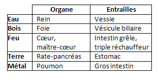 elements-organes-entrailles