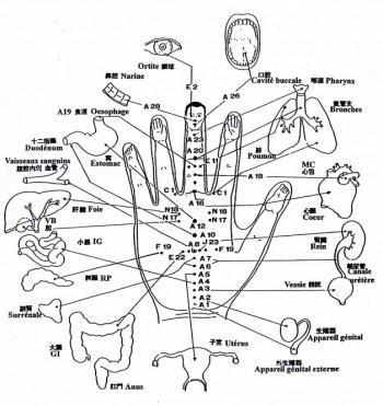 Cervical osteokhondroz fait mal non le cou fait mal la tête